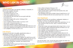 Who I Am In Christ Postcard